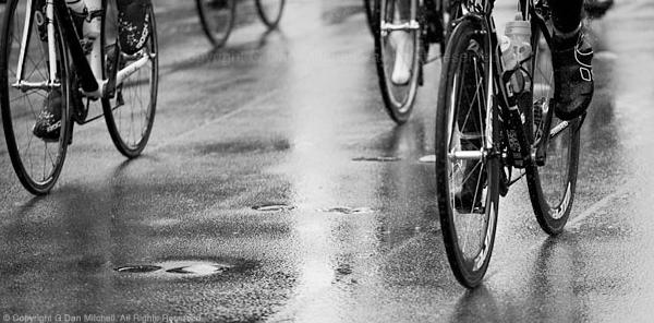 Bicycles in Rain